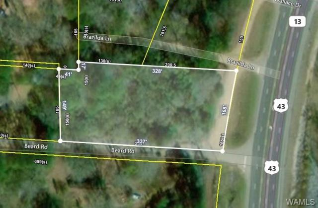 9202 Highway 43 N, NORTHPORT, AL 35473 (MLS #134094) :: The Advantage Realty Group