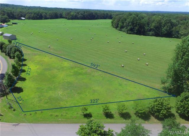 Lot 17 N River Farms Drive, NORTHPORT, AL 35473 (MLS #134115) :: The Advantage Realty Group