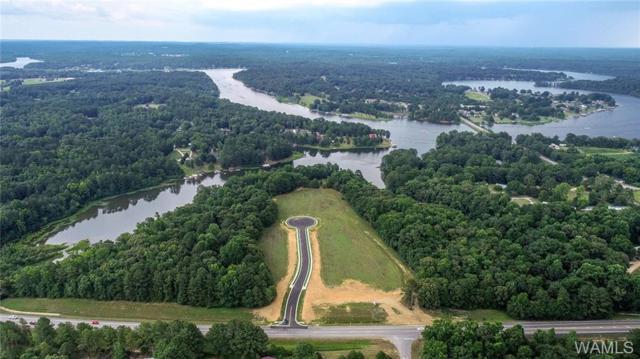 9 Rising Tide, NORTHPORT, AL 35475 (MLS #134152) :: Hamner Real Estate