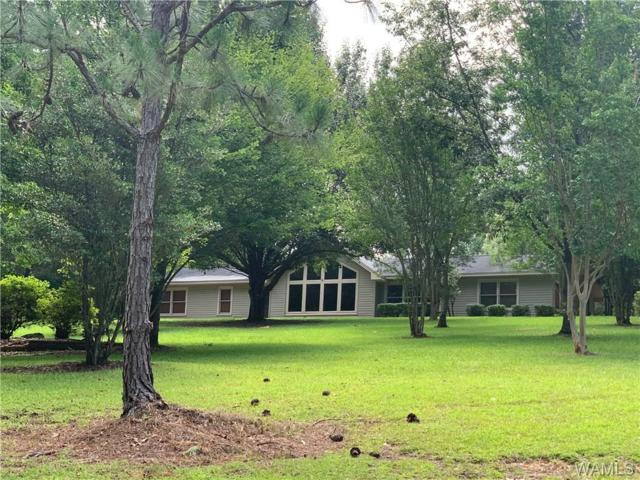 11817 Day Lake Drive, BROOKWOOD, AL 35444 (MLS #134162) :: The Alice Maxwell Team