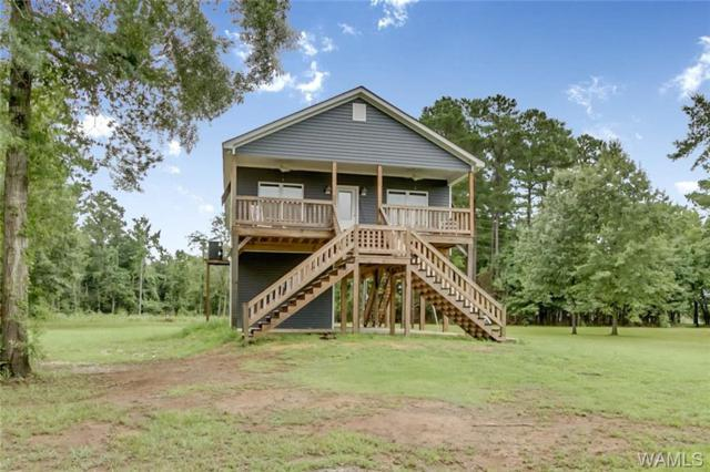 300 Cypress Lake Drive, PICKENSVILLE, AL 35447 (MLS #134169) :: Hamner Real Estate