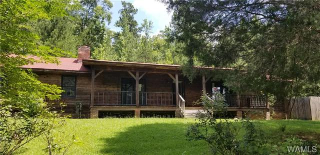 7282 County Road, MOUNDVILLE, AL 35474 (MLS #134178) :: The Gray Group at Keller Williams Realty Tuscaloosa