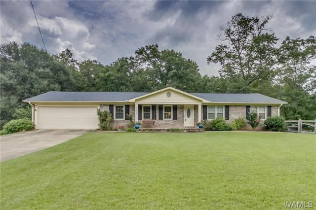 11138 Lakewood Drive, NORTHPORT, AL 35473 (MLS #134230) :: Hamner Real Estate