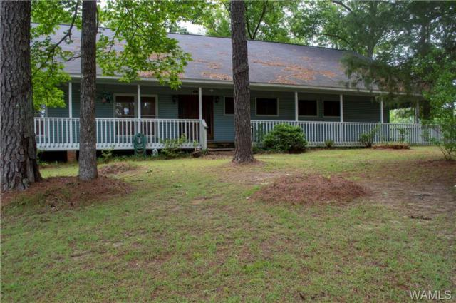 11756 Overland Road, DUNCANVILLE, AL 35456 (MLS #134233) :: Hamner Real Estate