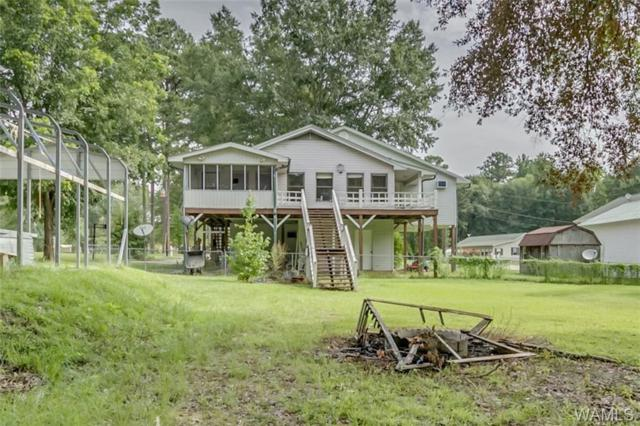 19 Forestview Drive, PICKENSVILLE, AL 35447 (MLS #134243) :: The Alice Maxwell Team