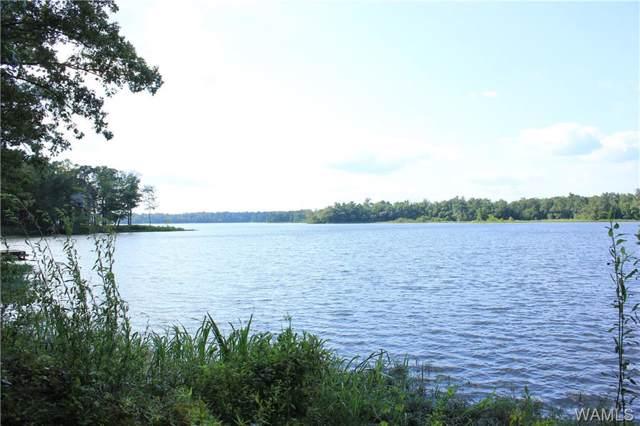 103 Cypress Point Drive, AKRON, AL 35441 (MLS #134275) :: Hamner Real Estate