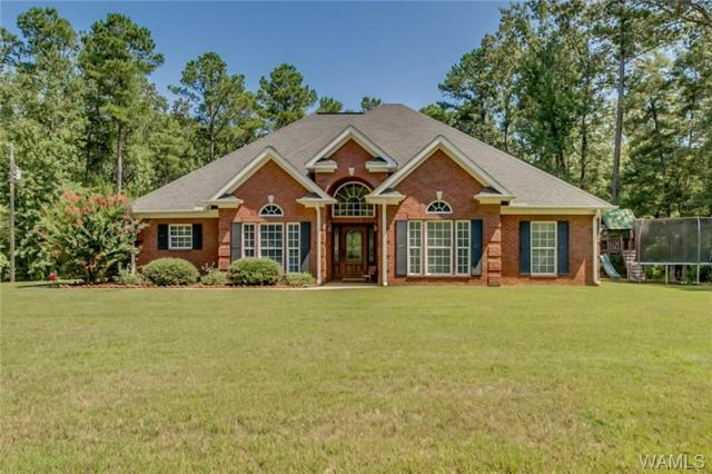 16849 Pine Island Road, NORTHPORT, AL 35475 (MLS #134337) :: The Advantage Realty Group
