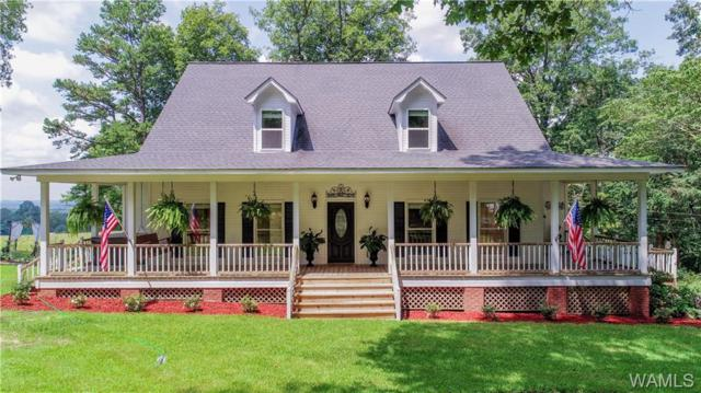 16384 Cornelius Church Road, BUHL, AL 35446 (MLS #134363) :: The Advantage Realty Group