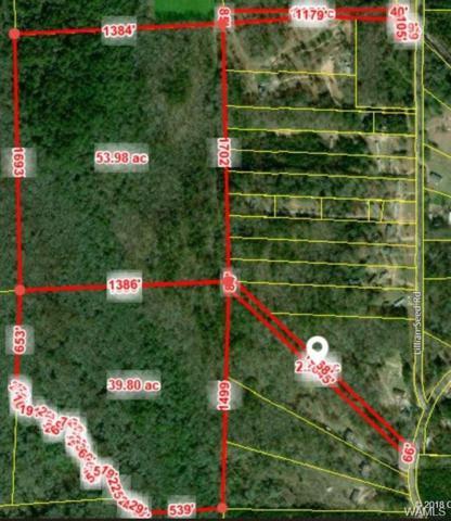 0 N Co Road 9 Highway N, GORDO, AL 35466 (MLS #134492) :: The Alice Maxwell Team