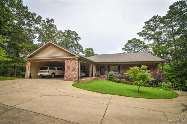 15351 Freemans Bend Road, NORTHPORT, AL 35475 (MLS #134512) :: The Gray Group at Keller Williams Realty Tuscaloosa