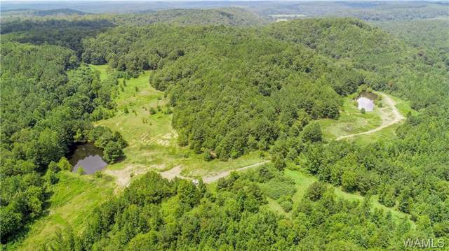 000 County Road 63, BERRY, AL 35546 (MLS #134559) :: Wes York Team