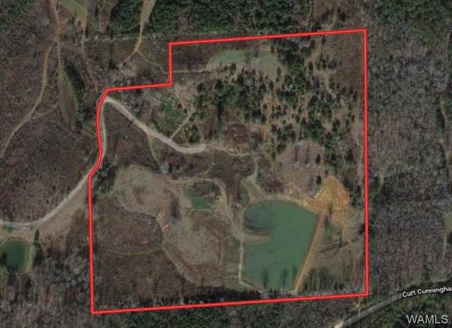 0 Curt Cunningham Road, NORTHPORT, AL 35475 (MLS #134576) :: The Advantage Realty Group