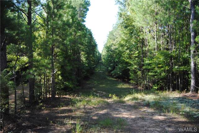 000 Fernbank Rd./House Rd, MILLPORT, AL 35576 (MLS #134659) :: The Advantage Realty Group