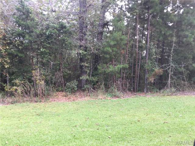 LOT 28 4TH Avenue, TUSCALOOSA, AL 35405 (MLS #134907) :: The Gray Group at Keller Williams Realty Tuscaloosa