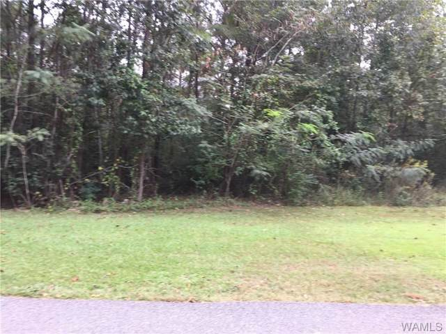 LOT 64 Blue Pine Circle, BROOKWOOD, AL 35444 (MLS #134909) :: The K|W Group