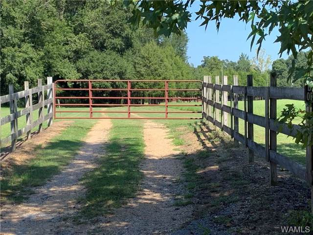 2614 County Road 156, RALPH, AL 35480 (MLS #134920) :: Hamner Real Estate