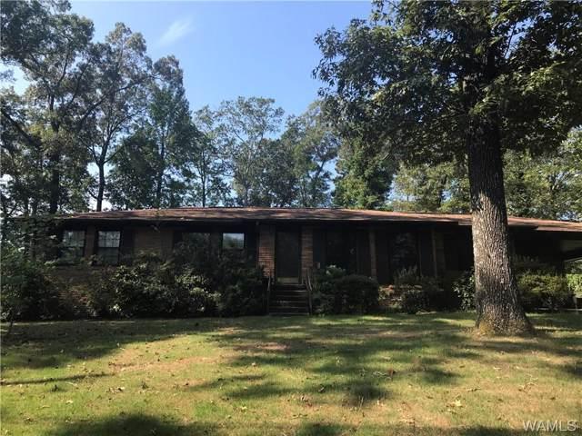 4125 Hillsboro Drive, TUSCALOOSA, AL 35404 (MLS #135061) :: The Gray Group at Keller Williams Realty Tuscaloosa