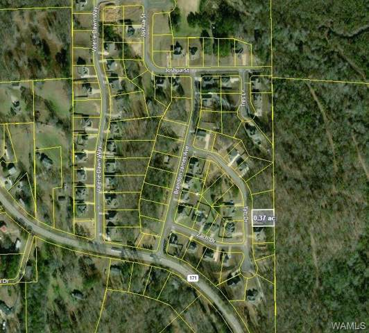 13711 Tab Drive, NORTHPORT, AL 35475 (MLS #135178) :: The Advantage Realty Group
