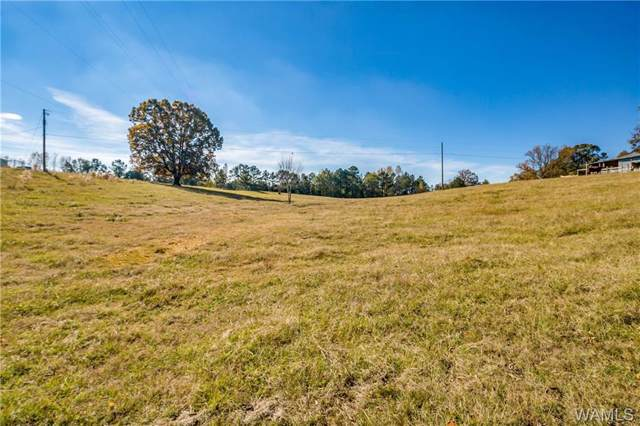 00 Evergreen Church Road, VANCE, AL 35490 (MLS #135214) :: Hamner Real Estate