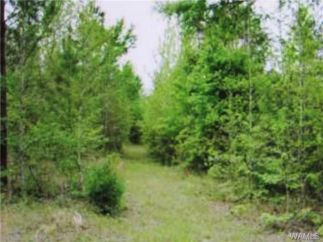 000 Halbert Church Rd, ETHELSVILLE, AL 35461 (MLS #135239) :: The Advantage Realty Group