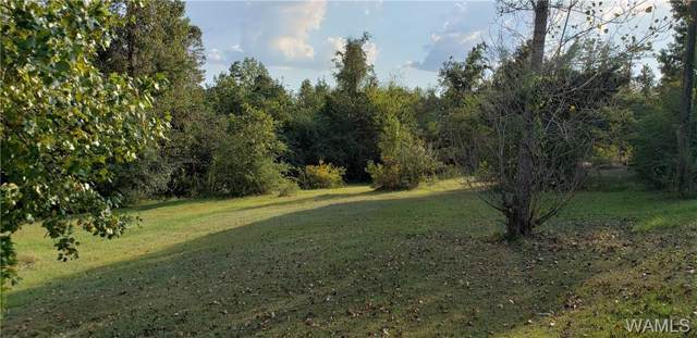 13463 Rifle Range Road, COTTONDALE, AL 35453 (MLS #135244) :: The Advantage Realty Group