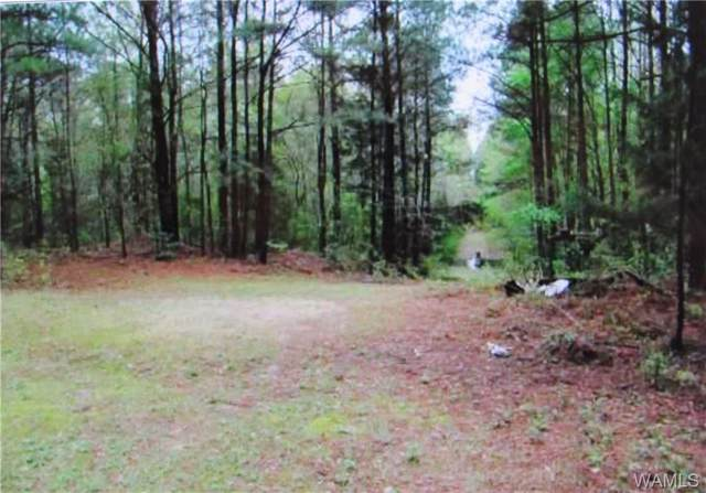 00 County Rd 3, REFORM, AL 35481 (MLS #135253) :: The Advantage Realty Group