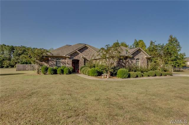 12406 Cherokee Trail, NORTHPORT, AL 35475 (MLS #135288) :: The Advantage Realty Group