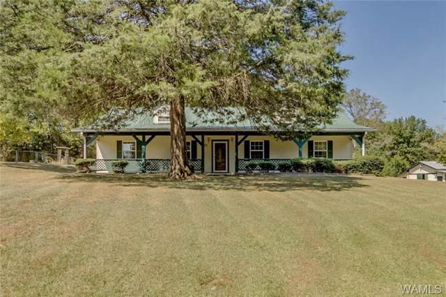 14172 Snider Rd, COTTONDALE, AL 35453 (MLS #135303) :: The Advantage Realty Group