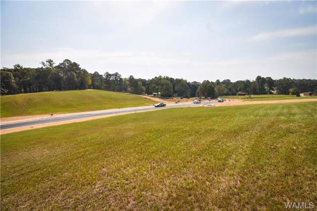 27 Highland Lakes Point, NORTHPORT, AL 35475 (MLS #135395) :: The Advantage Realty Group