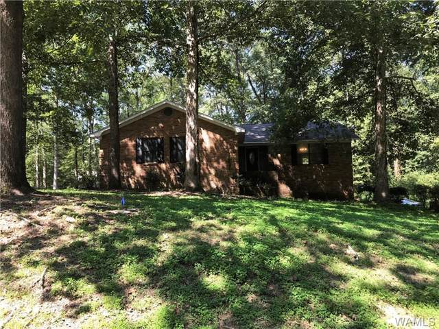 15288 Woodbend Road, NORTHPORT, AL 35475 (MLS #135406) :: The Alice Maxwell Team