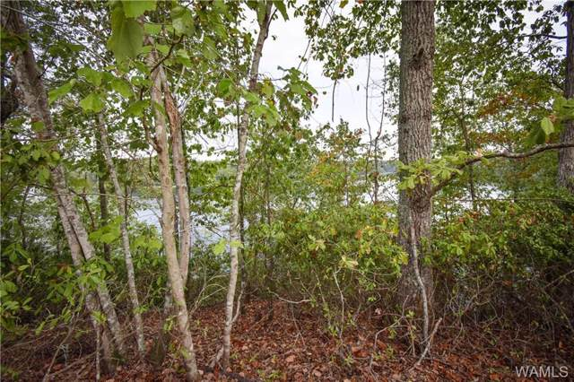 36 Highland Lakes Point, NORTHPORT, AL 35475 (MLS #135417) :: The Advantage Realty Group