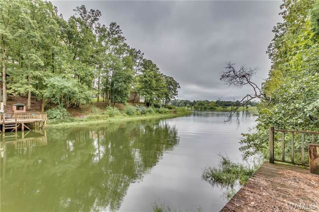 73 Cherokee Drive, NORTHPORT, AL 35475 (MLS #135470) :: Hamner Real Estate