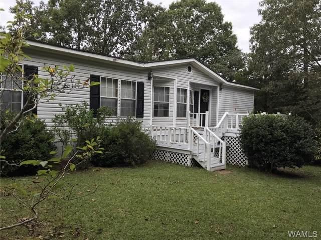 14700 Sally Hamner Road, NORTHPORT, AL 35475 (MLS #135480) :: Hamner Real Estate