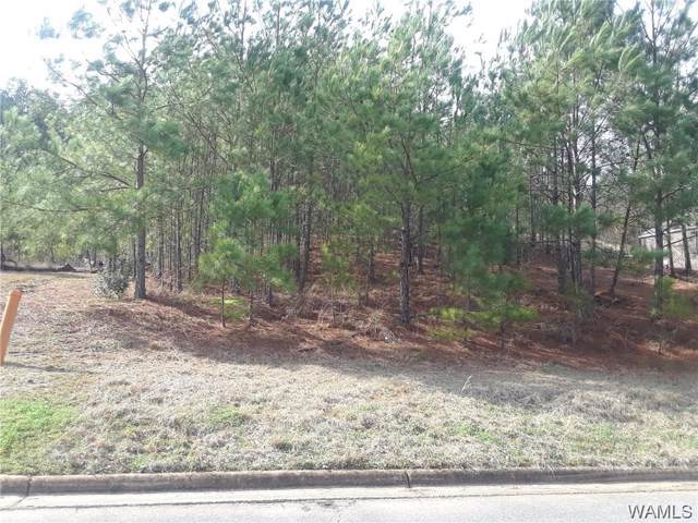 00 26TH Avenue, NORTHPORT, AL 35473 (MLS #135521) :: The Advantage Realty Group