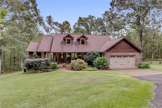 14059 Frank Lary Road, NORTHPORT, AL 35475 (MLS #135568) :: Wes York Team
