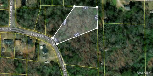 39 Cumberland Park, TUSCALOOSA, AL 35404 (MLS #135646) :: The Advantage Realty Group