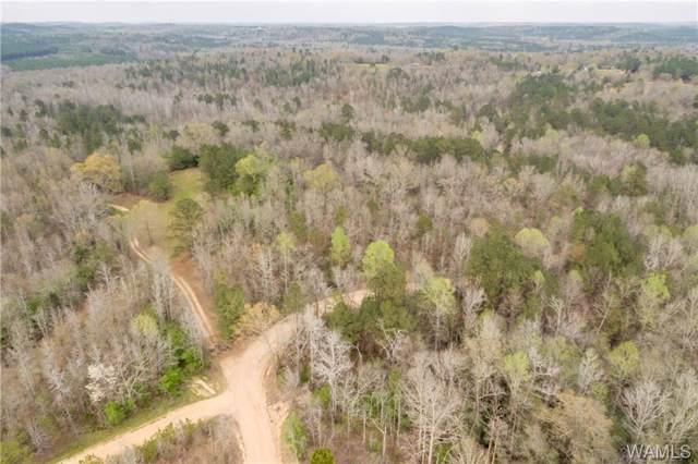 03 Lee Bonner Road, TUSCALOOSA, AL 35457 (MLS #135659) :: The Gray Group at Keller Williams Realty Tuscaloosa