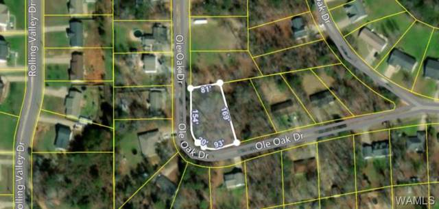 14612 Ole Oak Drive, COALING, AL 35453 (MLS #135670) :: The Gray Group at Keller Williams Realty Tuscaloosa