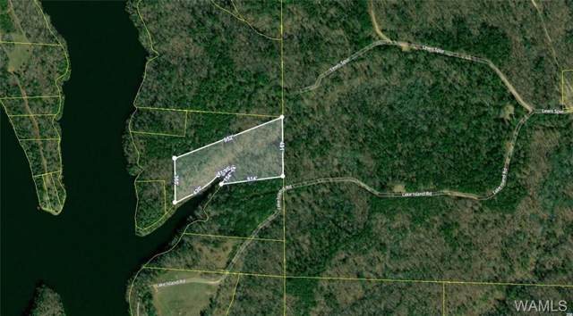 0 Lake Island Road, TUSCALOOSA, AL 35406 (MLS #135728) :: Hamner Real Estate