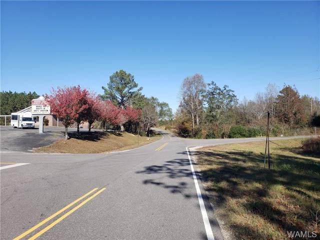 16350 County Rd 53 N, ELDRIDGE, AL 35554 (MLS #135817) :: Hamner Real Estate