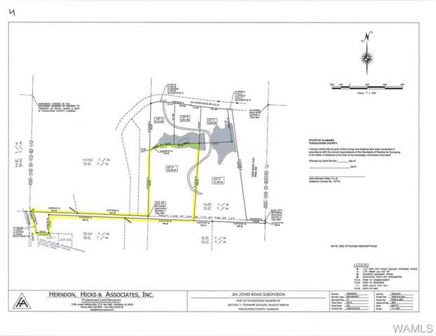 Lot 4 Jim Jones Road, COTTONDALE, AL 35453 (MLS #135850) :: Hamner Real Estate