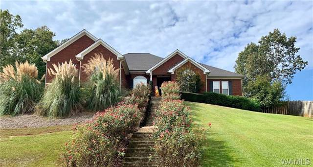 13806 Burks Parkway, NORTHPORT, AL 35475 (MLS #135972) :: The Advantage Realty Group