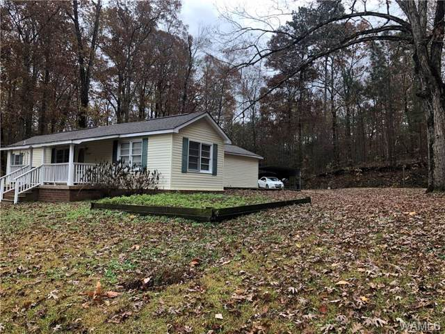 5405 Highway 171, NORTHPORT, AL 35473 (MLS #135992) :: The Advantage Realty Group