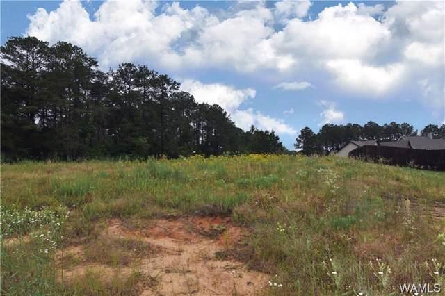 15510 Don Anderson Parkway, BROOKWOOD, AL 35444 (MLS #135994) :: Hamner Real Estate