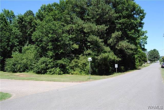 00 6th Ave Nw, FAYETTE, AL 35555 (MLS #136014) :: Hamner Real Estate