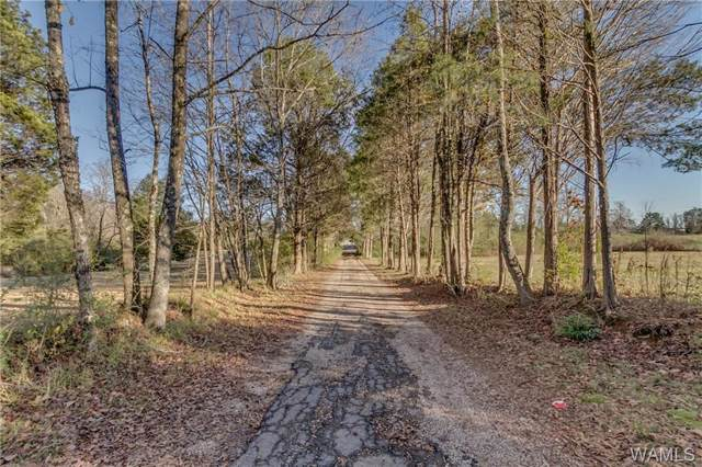 12965 Tannehill Parkway, MCCALLA, AL 35111 (MLS #136153) :: The Gray Group at Keller Williams Realty Tuscaloosa