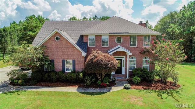 16075 Pebble Beach Circle, NORTHPORT, AL 35475 (MLS #136354) :: The Alice Maxwell Team
