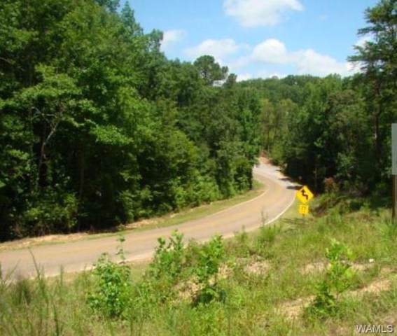 00A Sexton Bend Road, TUSCALOOSA, AL 35401 (MLS #136514) :: The Advantage Realty Group