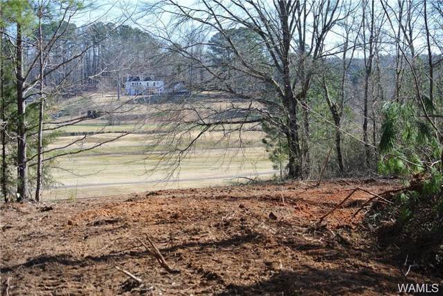 000 Shamblin Road, NORTHPORT, AL 35473 (MLS #136517) :: The Advantage Realty Group