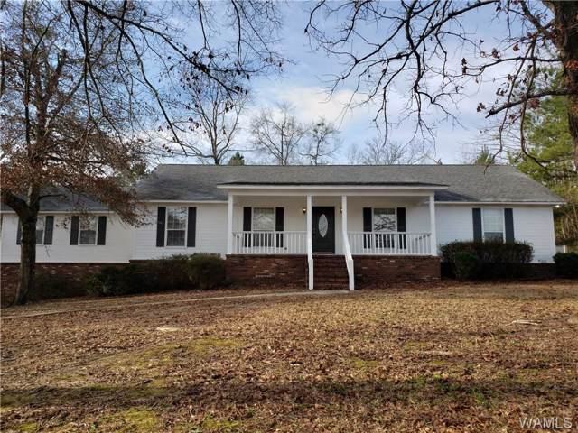 5602 Shenandoah Drive, NORTHPORT, AL 35473 (MLS #136549) :: The K|W Group